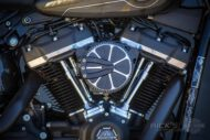 Harley Davidson Softail Standart Bobber Ricks 019