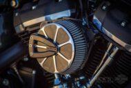 Harley Davidson Softail Standart Bobber Ricks 023
