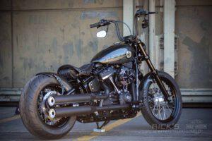 Harley Davidson Softail Standart Bobber Ricks 027