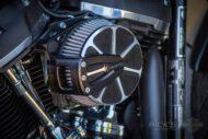 Harley Davidson Softail Standart Bobber Ricks 030