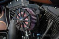 Harley Davidson Twin Cam Softail Slim Bobber Ricks 022