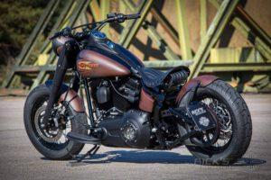 Harley Davidson Twin Cam Softail Slim Bobber Ricks 035